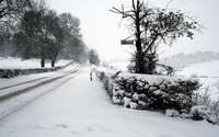 Снег  -  тема  3